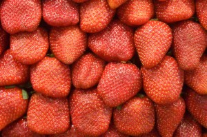 Erdbeere_ImLichte.net