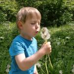 Kinder-ImLichte.net